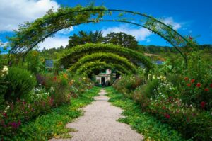A chaotic garden that looks beautiful